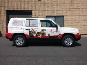 Vehicle Wraps Westchester County NY